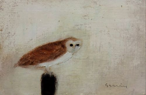 Barn Owl | Andrew Squire