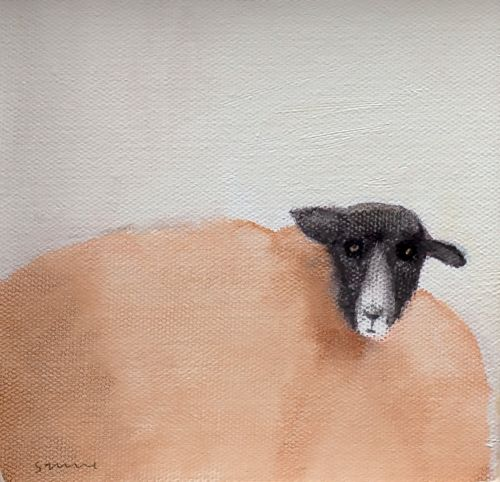 Black Faced Sheep | Andrew Squire