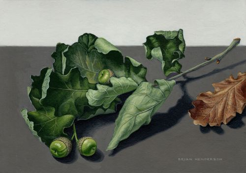 Oak Leaves | Brian Henderson