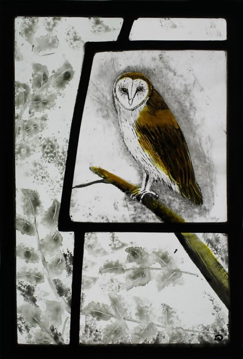 Barn Owl | Ise Stumpff