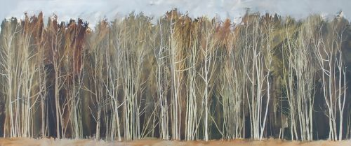 In the Clearing, Duns Wood | Anna King